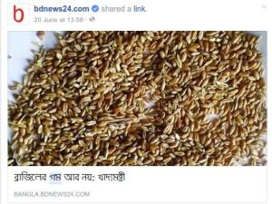 Wheat-bdnews24